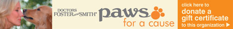paws-for-a-cause-468