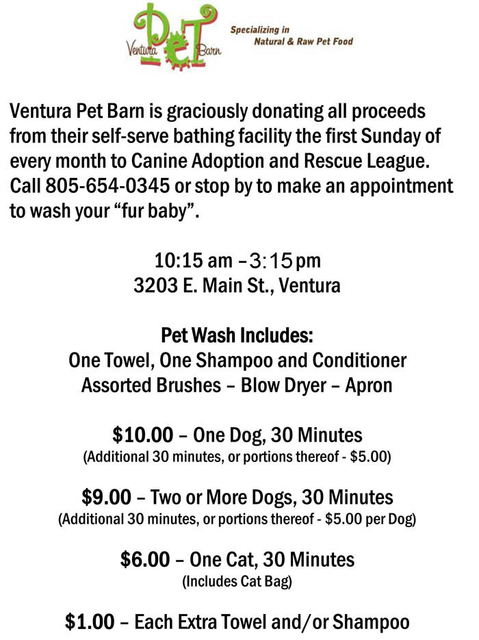 dog_bath_fundraiser